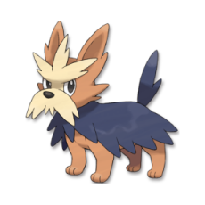 #507 - Ponchien